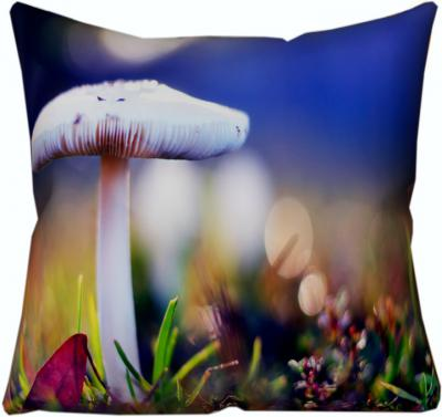 Cushions & Pillows Cover Starts from Rs. 89