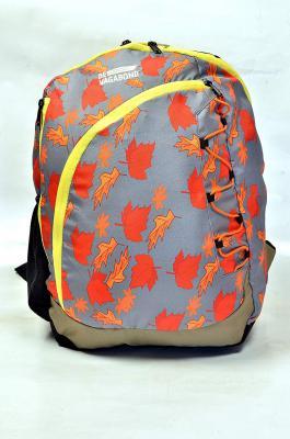 Devagabond 28 Ltrs Purple School Backpack