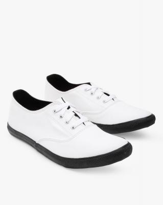 AJIO Low-Top Canvas Sneakers