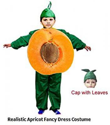 Fancy Dress Kids Costume