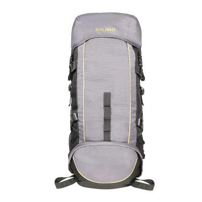 Amazon Brand - Solimo Voyager Rucksack (43 litres, Metallic Grey & Lime)