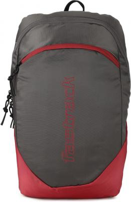 Fastrack Essentials 15 L Backpack  (Grey)