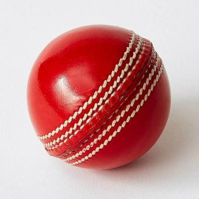 Millets Bull Leather Ball Cricket Leather Ball