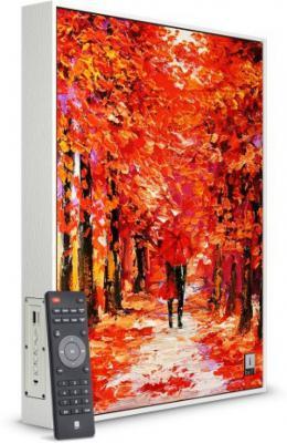Iball FRAME SPEAKER 80 Bluetooth Home Audio Speaker