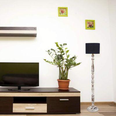 Tu Casa WWF-136 220-Watt Floor Lamp (Black)