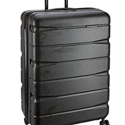 Teakwood ABS 30 cms Black Hardsided Check-in Luggage (TR_ABS_13_Dark_Black_L)