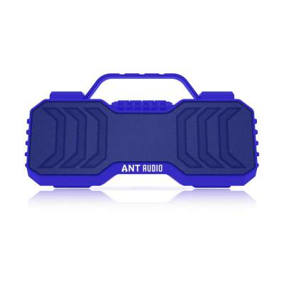 Ant Audio Treble X 950 Portable Bluetooth Speaker 6W, FM/Aux/SD Card/USB with TWS Function