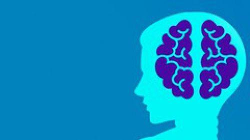 Machine Learning 401 : Zero to Mastery Machine Learning