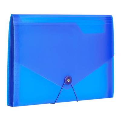 Amazon Brand - Solimo EF-09LT13-03 Expanding File, 13 Pockets - (Blue)