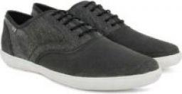 BLACK Color Arrow Corporate Casuals shoes For Men