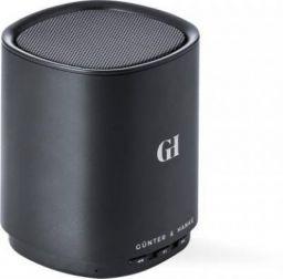 Gunter & Hanke Kite 4 W Bluetooth Speaker  (Black, Mono Channel)