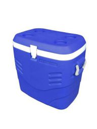 Princeware Plastic Ice Box, 41 Litre, Assorted