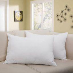 Flipkart SmartBuy Solid Bed/Sleeping Pillow Pack of 2