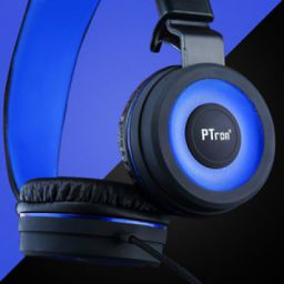 PTron Mamba Headphone Stereo Wired Earphone On-Ear