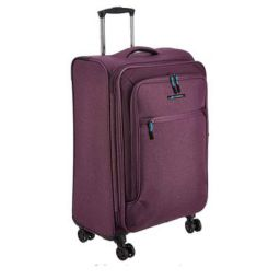 Teakwood Synthetic 28 cms Purple Hardsided Check-in Luggage (TR_T_14_Purple_M)