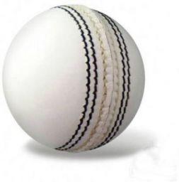 Azone Swift Cricket Leather Ball