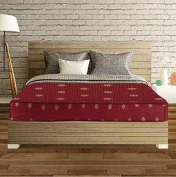 SLEEPSPA Back Support Cotton Orthopaedic Coir Mattress, Queen Size, Maroon