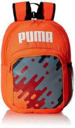 PUMA 0 Ltrs nrgy red-high Risk red-Grey Dawn-Castlerock-puma White School Backpack (7677701)