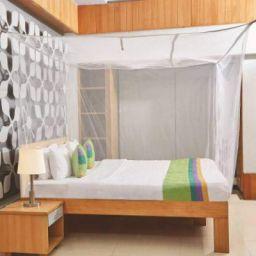 Divayanshi Mosquito Net White Polycotton 3x6.5 Insect Protection Net